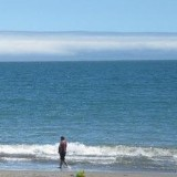 An image of zerolizer