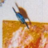 An image of Raycakes