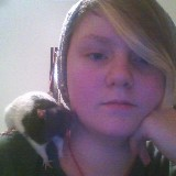 An image of RatAttack_