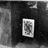 An image of cuharv