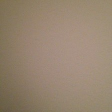 An image of dorchel