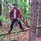 An image of lumberjack32192